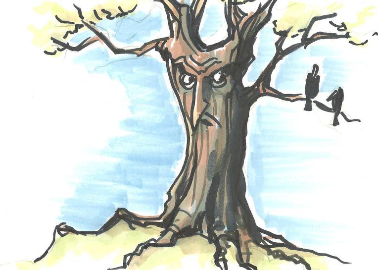tree grump